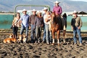 Experiences Cutting-Horses-at-Inter-Mountain-Fair